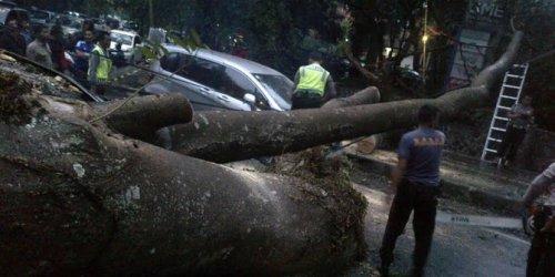 mobil terkena tumbangan pohon itb