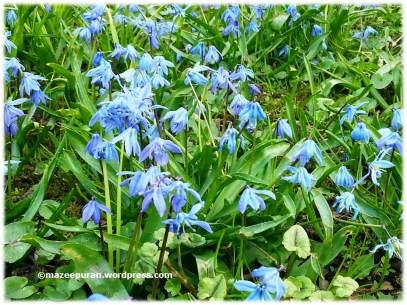 spring3_04