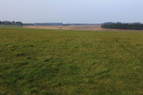 Fields by Stonehenge