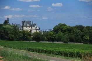 France Vinyard