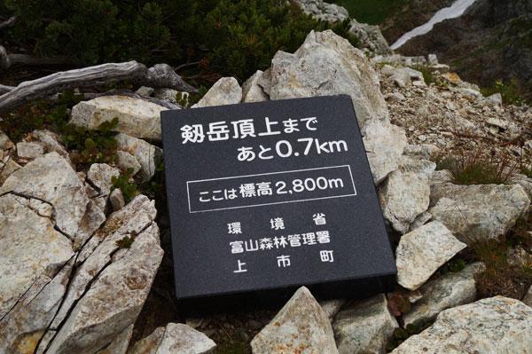 DSC08809