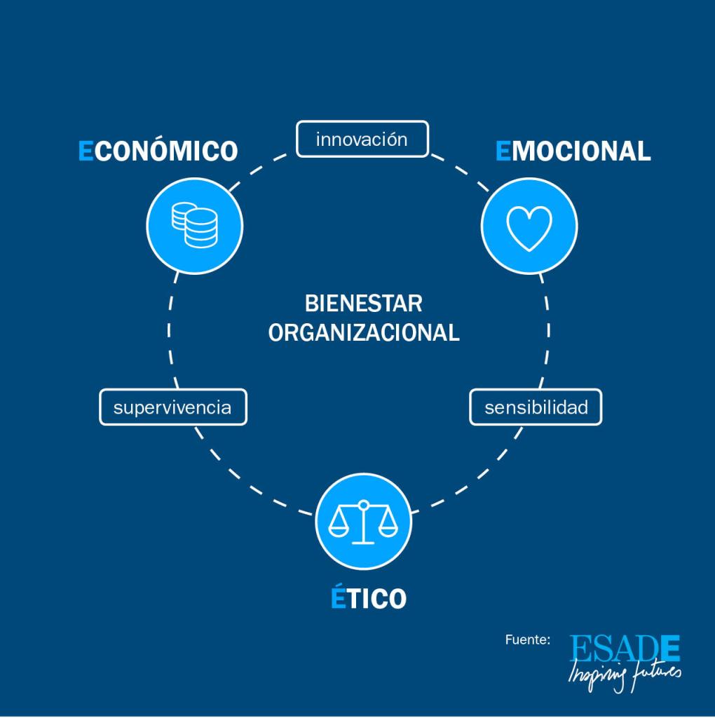 IDEAMERICAS_Dolan_Modelo Traixial 3E2
