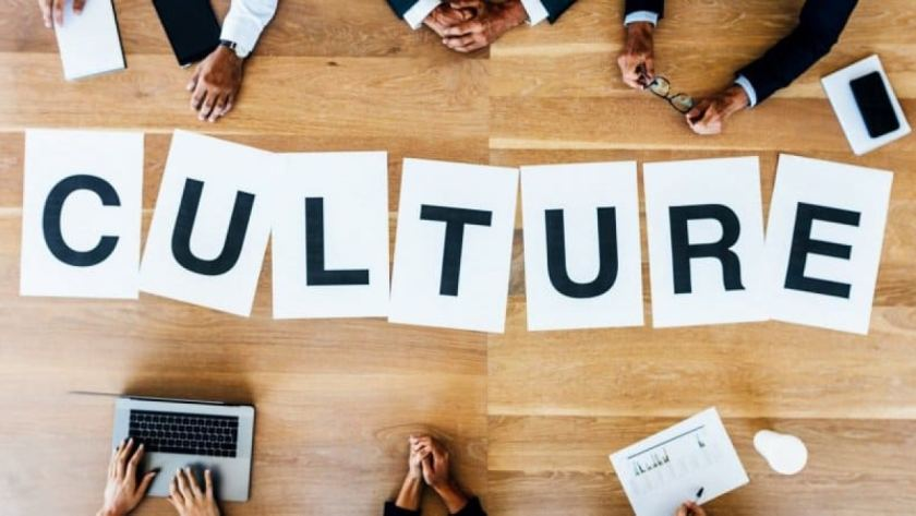 Culture as liability, Organization culture