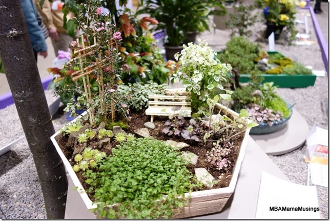 Miniature garden display with bench