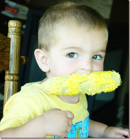 Close up of little boy with half eaten corn cob in his mouth