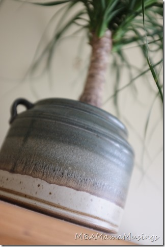 Lindgren Pottery Green Planter with Ponytail Cactus #ThankFALL