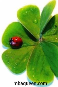 Как привлечь удачу и везение в собственной жизни