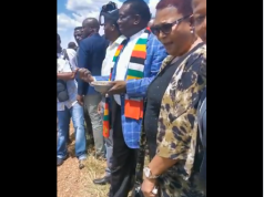 Mnangagwa and Khupe