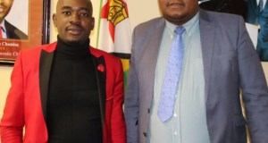 Job Sikhala and Chamisa