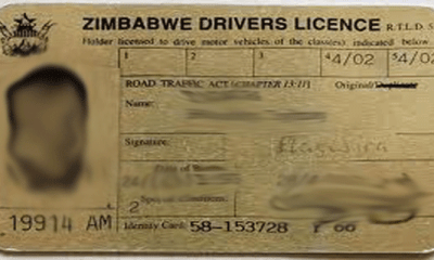 drivers-licence