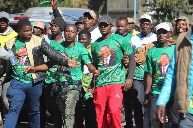 zanu-pf-youths-march