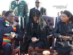 Mnangagwa and Grace Mugabe