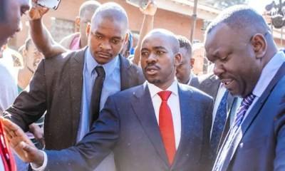Nelson_Chamisa_MDC_Alliance