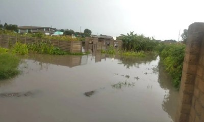 Chitungwiza-floods