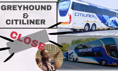 Greyhound and Citiliner Bus