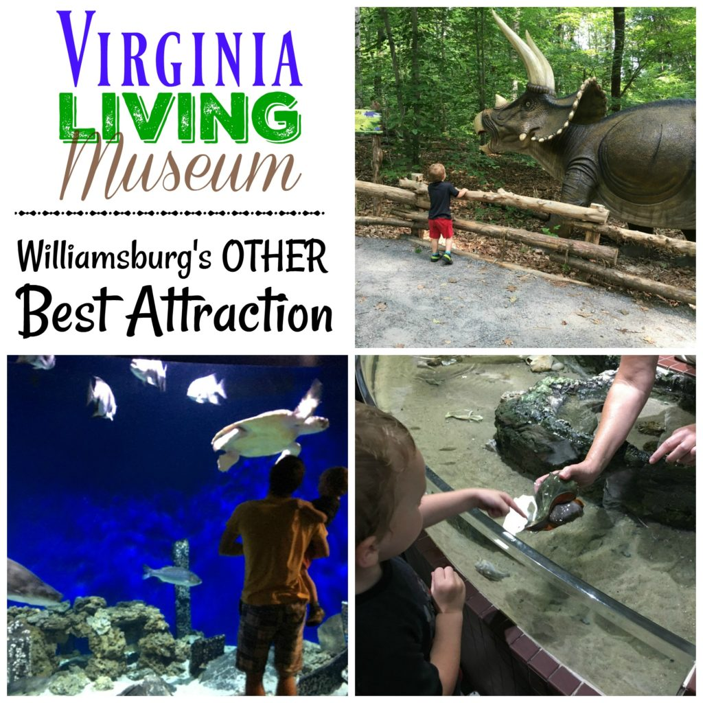 The Virginia Living Museum Williamsburg S Other Best