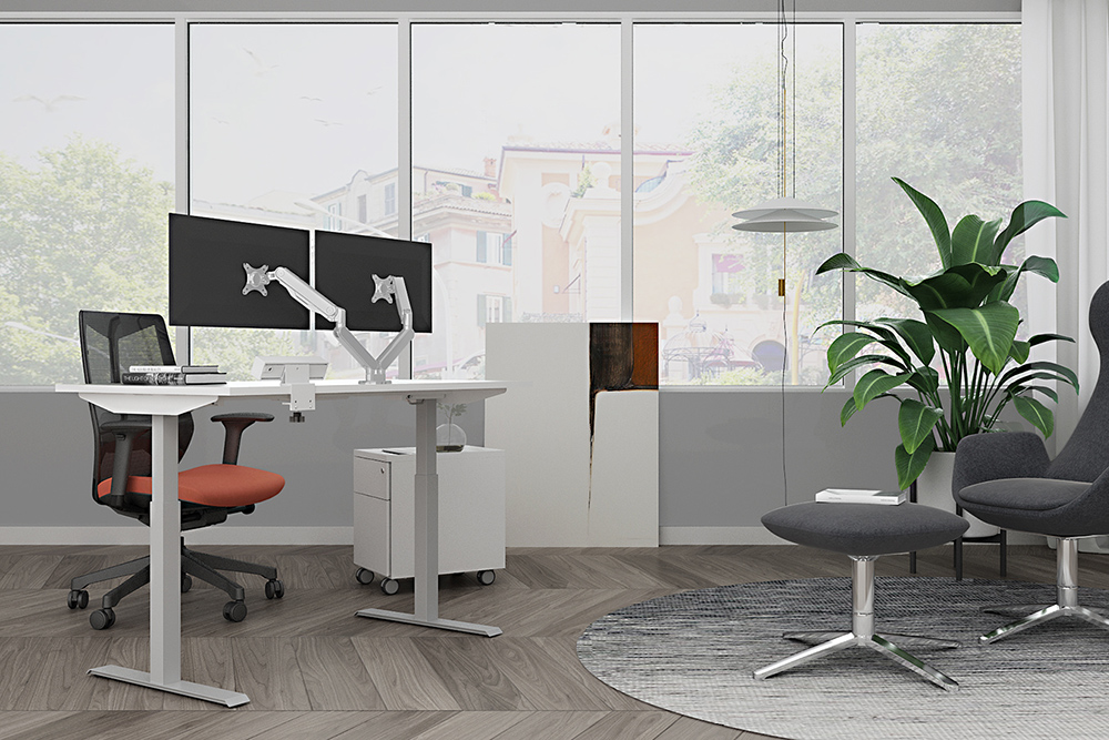 Ergonomic office with large reen plant