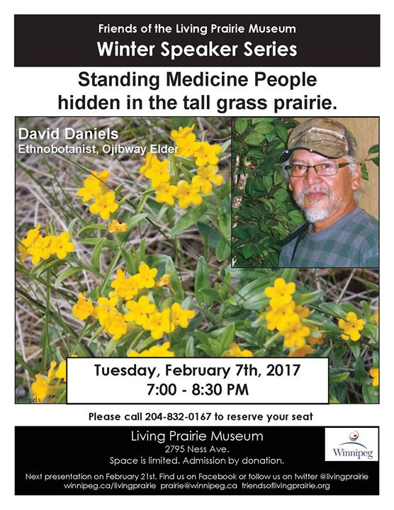 FULL Standing Medicine People hidden in the tall grass prairie.