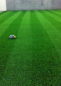 Artificial Grass | Ellora carpets | img4
