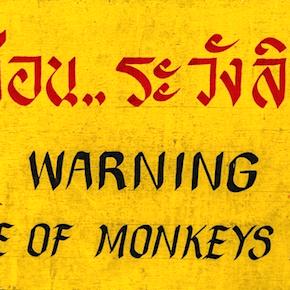 Warning: Warnings Are Useless
