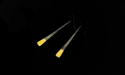 Gold tipped earrings  Carol Holaday