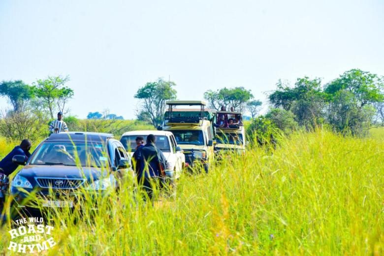 The Game Drive