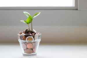 Why you're not raising more money