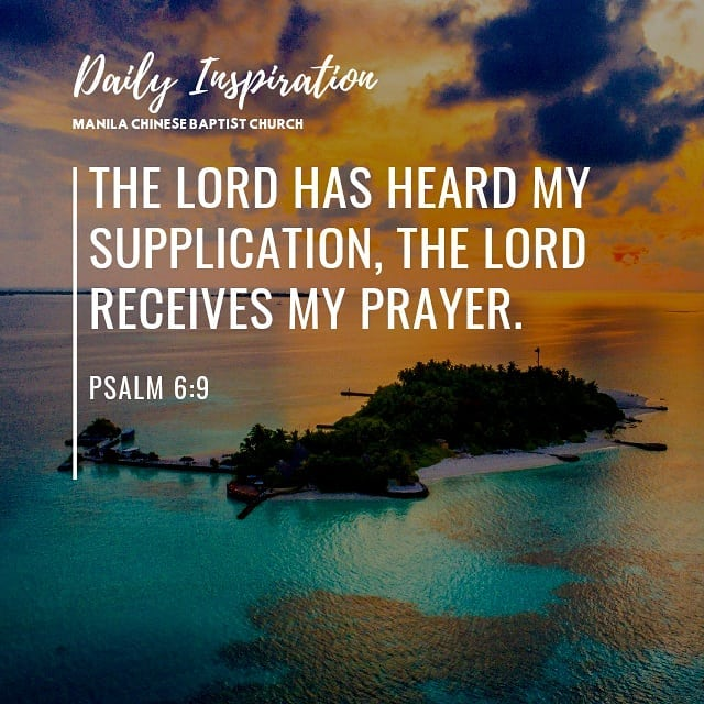 The Lord has heard my supplication, the Lord receives my prayer. ~ Psalm 6:9…