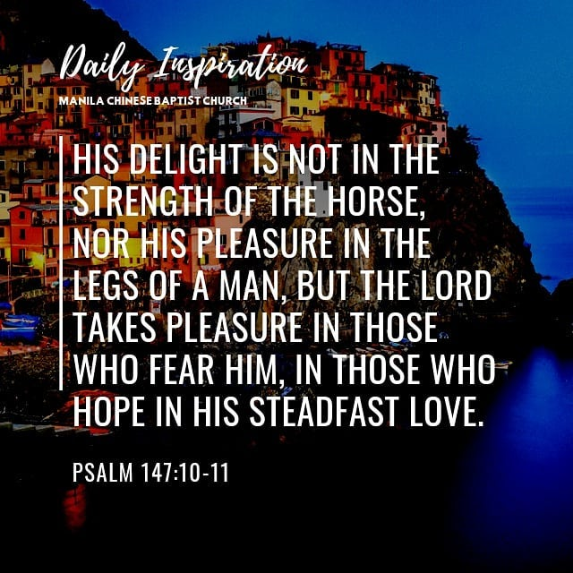 His delight is not in the strength of the horse, nor his pleasure in the legs of…