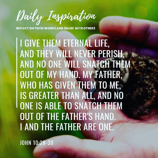 I give them eternal life, and they will never perish, and no one will snatch the…
