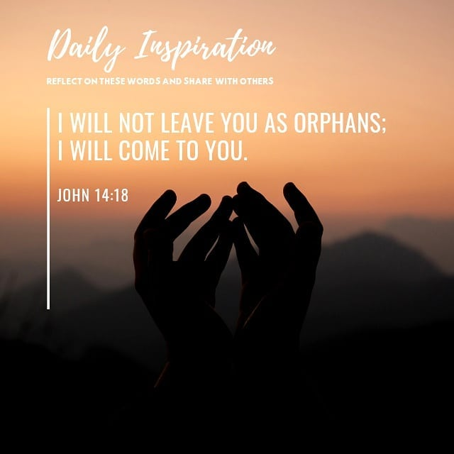 I will not leave you as orphans; I will come to you. ~ John 14:18…