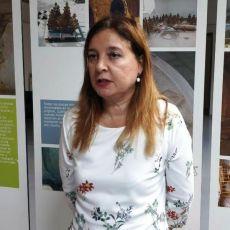 MC solicita una comisión de investigación sobre Lhicarsa