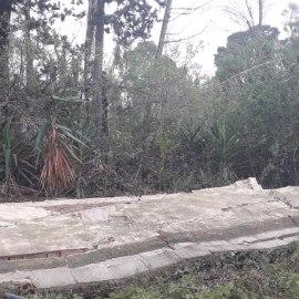 El desplome del muro perimetral de Villa Calamari demuestra, una vez más, la falta de interés e incapacidad del Gobierno regional para proteger el patrimonio histórico de Cartagena
