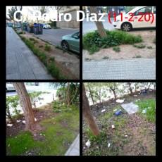 Castejón y Arroyo abandonan los parques y jardines del municipio mientras 'decoran' el centro con flores que se les caen