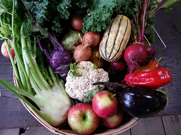 McCollum CSA Fall Share