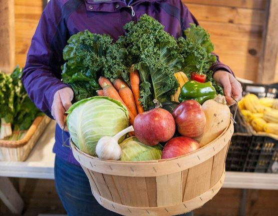 CSA Farm Share Winter Vegetables