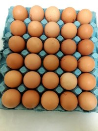 eggstray