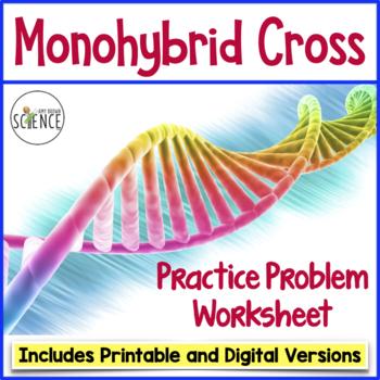 30 Monohybrid Crosses Practice Worksheet Answer Key ...