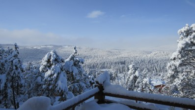 View of the ~30 inches of snow that fell from Wednesday through Thursday.