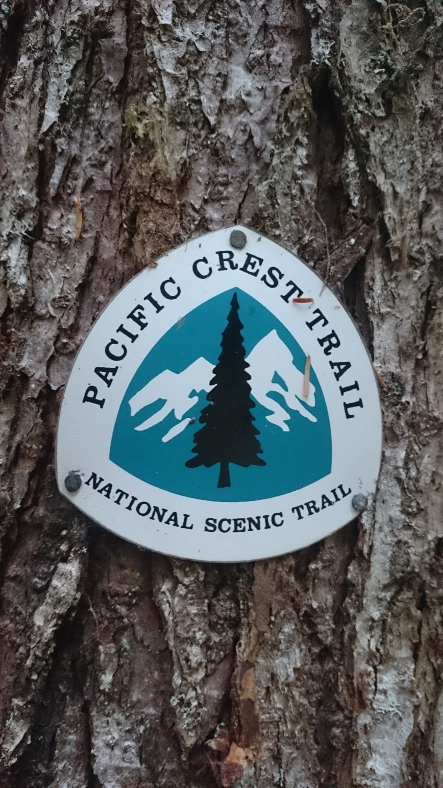 Sidesteps: PCT and Canada with Rory