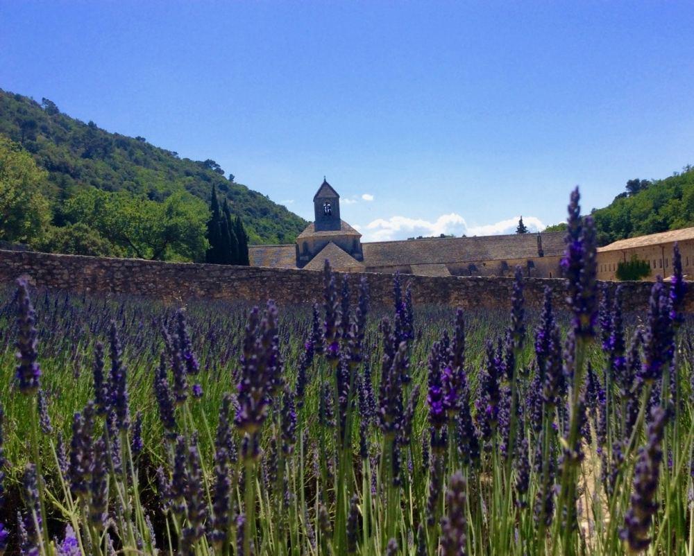 Abbaye de Sénanques près de Gordes en France.
