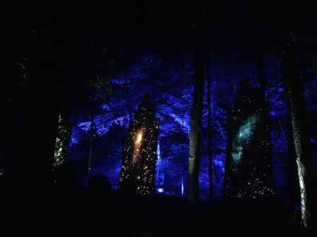 Tonga Lumina