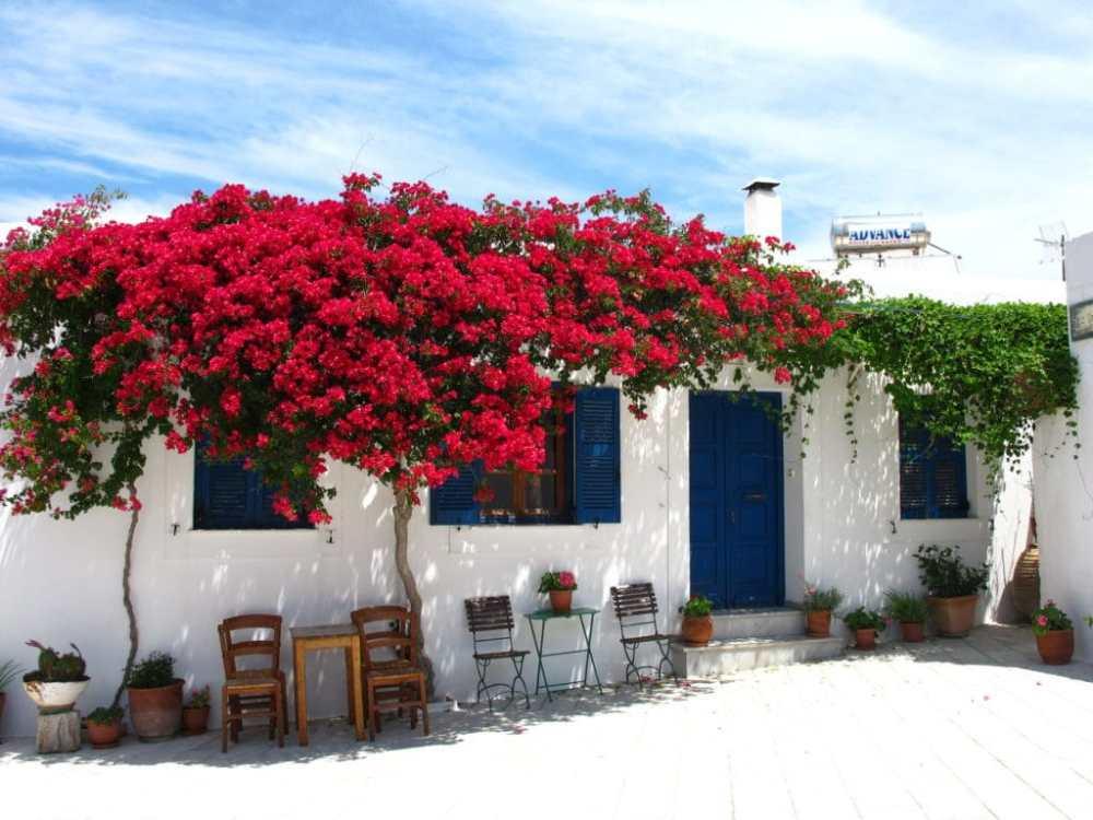 Bâtiment blanc et bleu dans le village de Lefkes sur l'île de Paros, Grèce