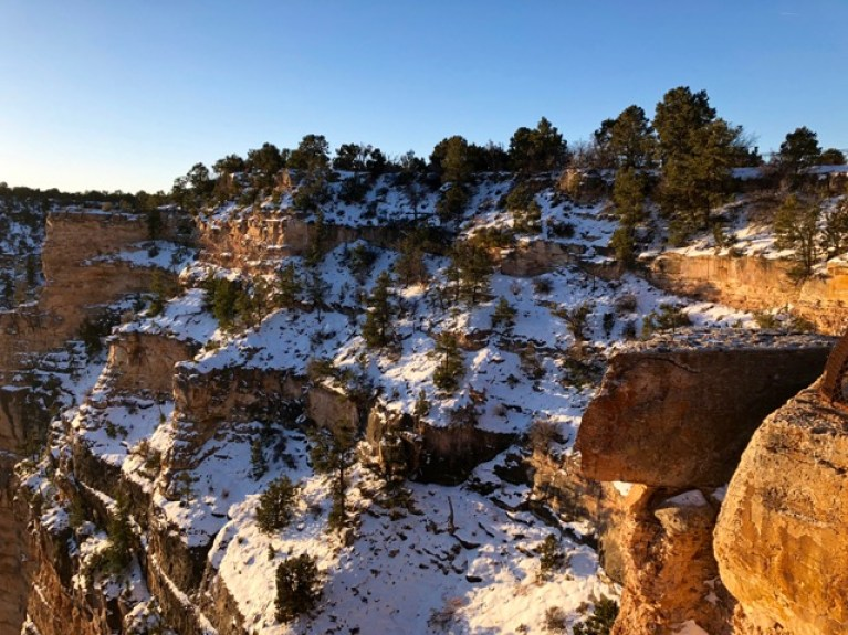 Neige au Grand Canyon Arizona