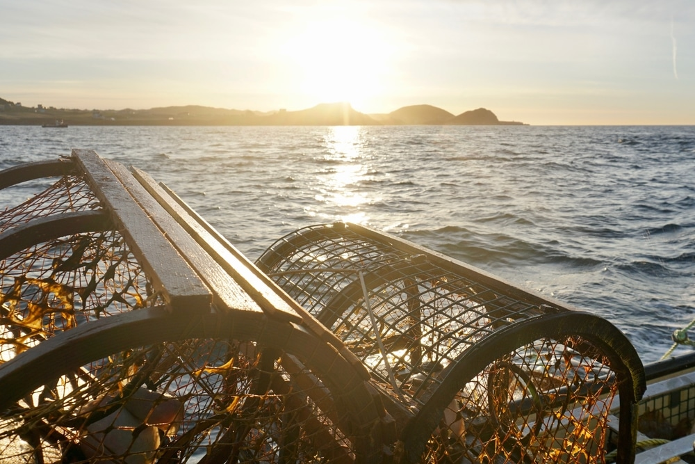 Cages à homard à la pêche Îles de la Madeleine