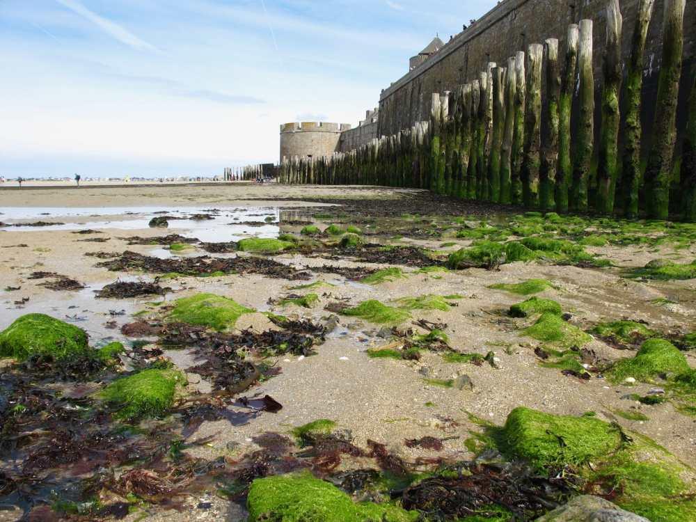 Fortifications de St-Malo à marée basse