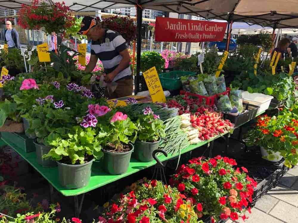 Ottawa farmer's market dimanche Parc Lansdowne