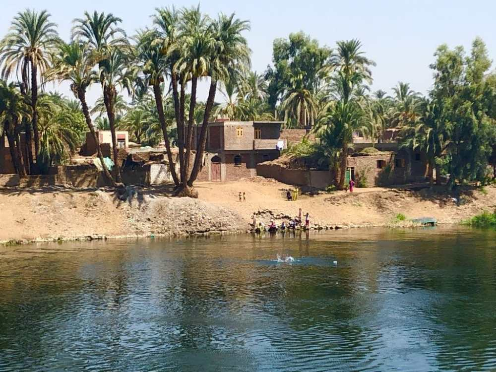 Des enfants s'amusent sur le bord du Nile et nagent vers le bateau
