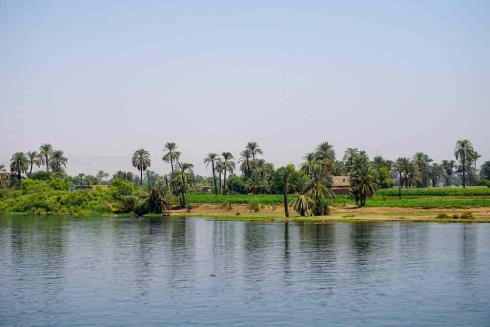Les terres fertiles sur les rives du Nil en Égypte
