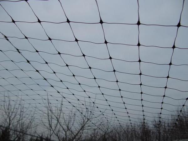 TRELLISVolier háló Vo-200 fekete 2x500 m